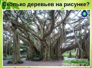 Сколько деревьев на рисунке? Это одно единственное дерево.