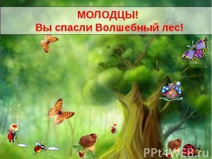 В одном очень волшебном лесу, росло очень волшебное дерево. И дарило, всем кто к