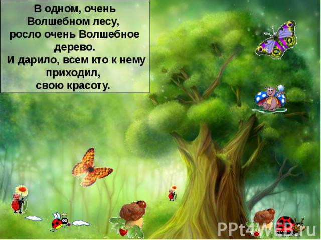 В одном очень волшебном лесу, росло очень волшебное дерево. И дарило, всем кто к нему приходил, свою красоту. Оно было таким волшебным, что все шли к нему кто красотой полюбоваться, а кто и помощи попросить.