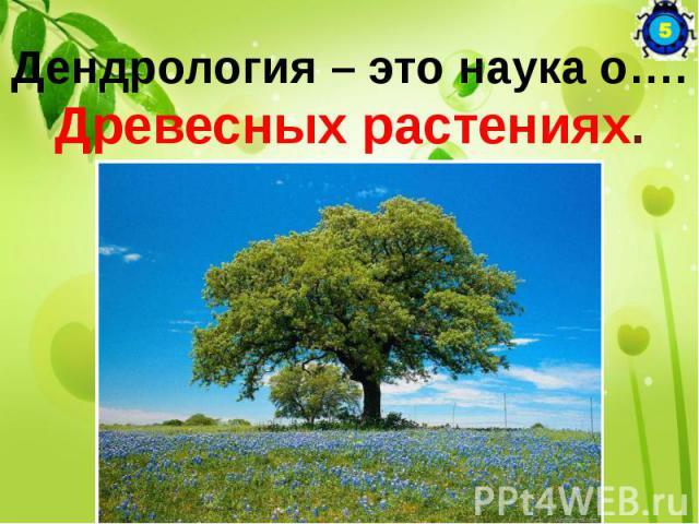 Дендрология – это наука о…. Древесных растениях.
