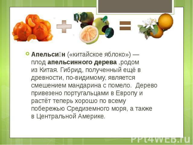 Апельси н(«китайское яблоко»)— плодапельсинного дерева,родом изКитая. Гибрид, полученный ещё в древности, по-видимому, является смешениеммандаринаcпомело. Дерево привезенопортугальцами…