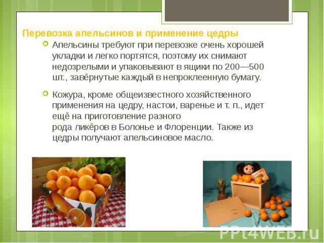 Перевозка апельсинов и применение цедры Апельсины требуют при перевозке очень хорошей укладки и легко портятся, поэтому их снимают недозрелыми и упаковывают в ящики по 200—500 шт., завёрнутые каждый в непроклеенную бумагу. Кожура, кроме общеизвестно…