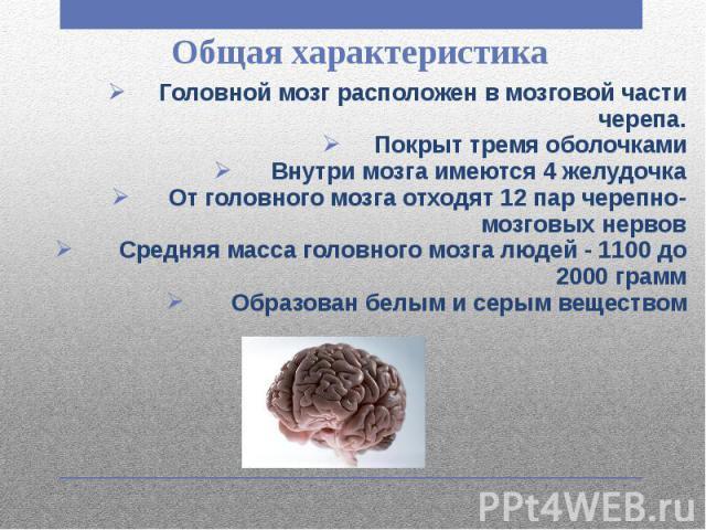 Общая характеристика Головной мозг расположен в мозговой части черепа. Покрыт тремя оболочками Внутри мозга имеются 4 желудочка От головного мозга отходят 12 пар черепно-мозговых нервов Средняя масса головного мозга людей - 1100 до 2000 грамм Образо…