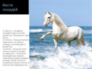 Масти лошадей 1) серость - поседение лошадей любых мастей с возрастом, образующе