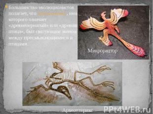 . Большинство эволюционистов полагает, что археоптерикс, имя которого означает «