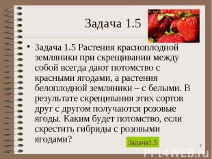 Задача 1.5 Растения красноплодной земляники при скрещивании между собой всегда д