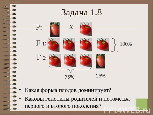 Какая форма плодов доминирует? Какая форма плодов доминирует? Каковы генотипы родителей и потомства первого и второго поколения?