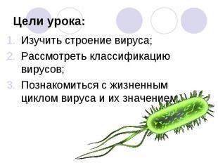Изучить строение вируса; Изучить строение вируса; Рассмотреть классификацию виру