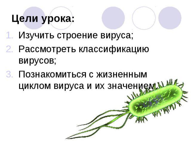 Изучить строение вируса; Изучить строение вируса; Рассмотреть классификацию вирусов; Познакомиться с жизненным циклом вируса и их значением.
