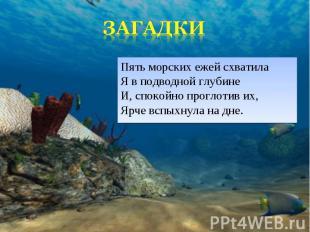 Пять морских ежей схватила Я в подводной глубине И, спокойно проглотив их, Ярче