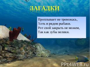 Проплывает не тревожась, Хоть и рядом рыбаки. Рот свой закрыть не можем, Так как