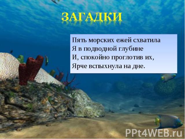 Пять морских ежей схватила Я в подводной глубине И, спокойно проглотив их, Ярче вспыхнула на дне. Пять морских ежей схватила Я в подводной глубине И, спокойно проглотив их, Ярче вспыхнула на дне.