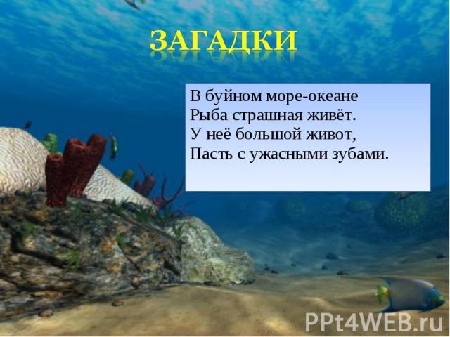 В буйном море-океане Рыба страшная живёт. У неё большой живот, Пасть с ужасными зубами. В буйном море-океане Рыба страшная живёт. У неё большой живот, Пасть с ужасными зубами.