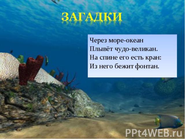 Через море-океан Плывёт чудо-великан. На спине его есть кран: Из него бежит фонтан. Через море-океан Плывёт чудо-великан. На спине его есть кран: Из него бежит фонтан.