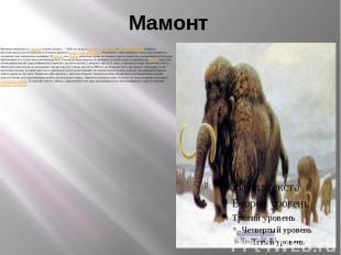 Мамонт Мамонты появились в плиоцене и жили 4,8млн.— 4500 лет назад в