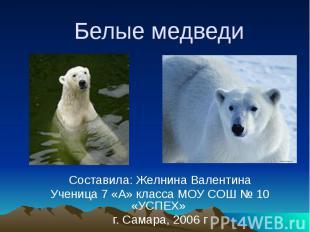 Белые медведи Составила: Желнина Валентина Ученица 7 «А» класса МОУ СОШ № 10 «УС