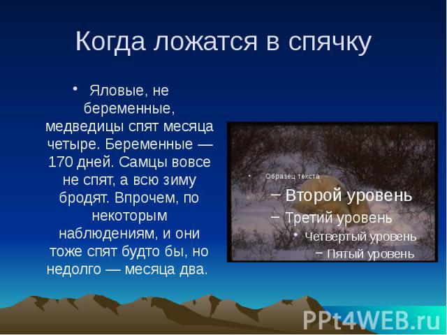 Когда ложатся в спячку Яловые, не беременные, медведицы спят месяца четыре. Беременные — 170 дней. Самцы вовсе не спят, а всю зиму бродят. Впрочем, по некоторым наблюдениям, и они тоже спят будто бы, но недолго — месяца два.