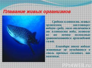 Плавание живых организмов