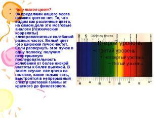 Что такое цвет? Что такое цвет? За пределами нашего мозга никаких цветов нет. То
