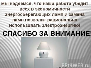 мы надеемся, что наша работа убедит всех в экономичности энергосберегающих ламп