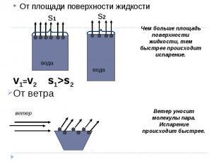 От площади поверхности жидкости От площади поверхности жидкости