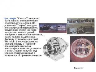 """На станции """"Салют-7"""" впервые были начаты эксперименты в области биотех"""