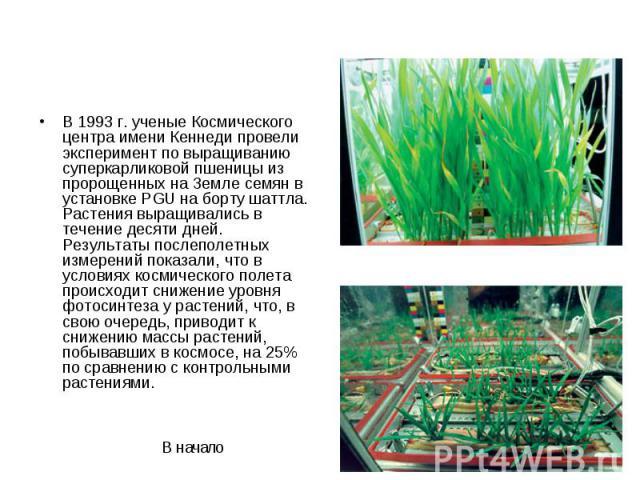 В 1993 г. ученые Космического центра имени Кеннеди провели эксперимент по выращиванию суперкарликовой пшеницы из пророщенных на Земле семян в установке PGU на борту шаттла. Растения выращивались в течение десяти дней. Результаты послеполетных измере…
