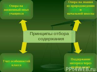 Принципы отбора содержания Принципы отбора содержания