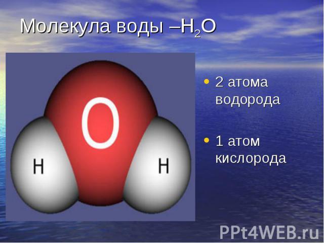 2 атома водорода 2 атома водорода 1 атом кислорода