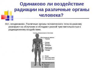 Нет, неодинаково. Различные органы человеческого тела по-разному реагируют на об