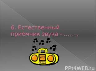 6. Естественный приемник звука - ……..