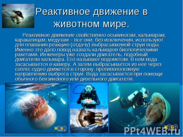 Реактивное движение свойственно осьминогам, кальмарам, каракатицам, медузам – все они, без исключения, используют для плавания реакцию (отдачу) выбрасываемой струи воды. Именно это дало повод назвать кальмаров биологическими ракетами. Инженеры уже с…