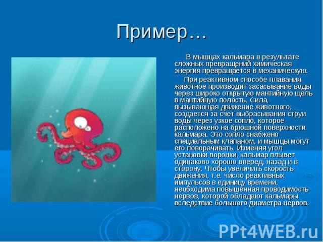 В мышцах кальмара в результате сложных превращений химическая энергия превращается в механическую. В мышцах кальмара в результате сложных превращений химическая энергия превращается в механическую. При реактивном способе плавания животное производит…