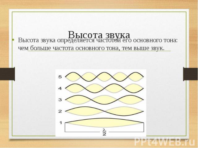 Высота звука определяется частотой его основного тона: чем больше частота основного тона, тем выше звук. Высота звука определяется частотой его основного тона: чем больше частота основного тона, тем выше звук.