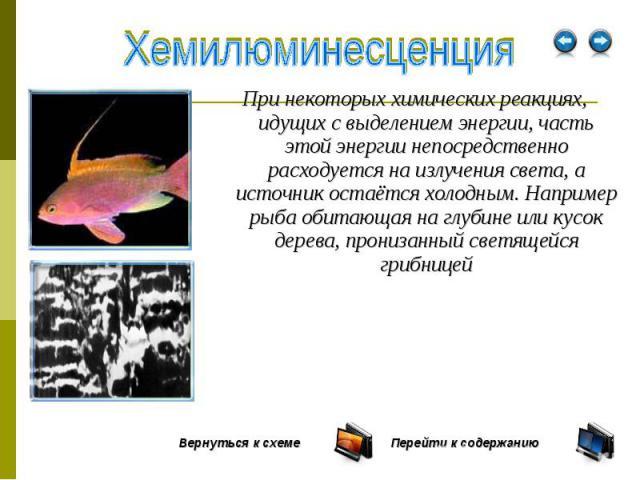 При некоторых химических реакциях, идущих с выделением энергии, часть этой энергии непосредственно расходуется на излучения света, а источник остаётся холодным. Например рыба обитающая на глубине или кусок дерева, пронизанный светящейся грибницей Пр…