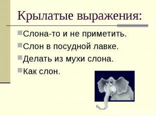 Слона-то и не приметить. Слона-то и не приметить. Слон в посудной лавке. Делать