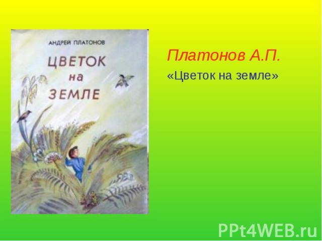Платонов цветок на земле скачать fb2