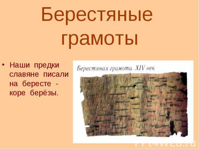 Наши предки славяне писали на бересте - коре берёзы. Наши предки славяне писали на бересте - коре берёзы.