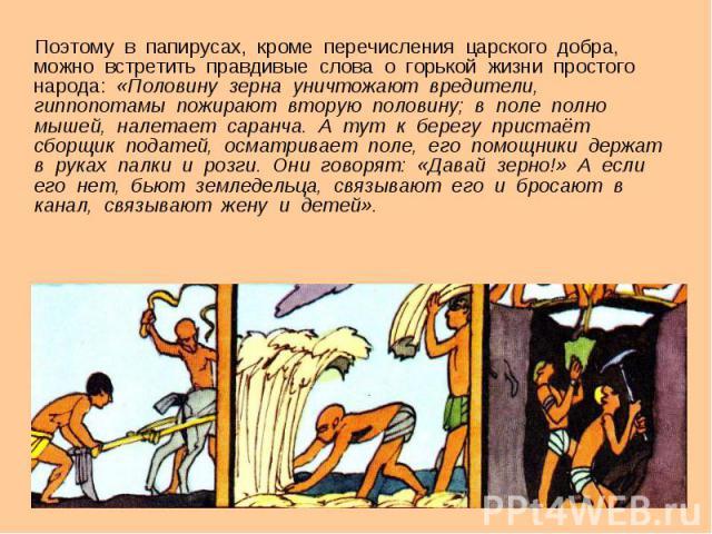 Поэтому в папирусах, кроме перечисления царского добра, можно встретить правдивые слова о горькой жизни простого народа: «Половину зерна уничтожают вредители, гиппопотамы пожирают вторую половину; в поле полно мышей, налетает саранча. А тут к берегу…