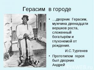 …дворник Герасим, мужчина двенадцати вершков роста, сложенный богатырём и глухон
