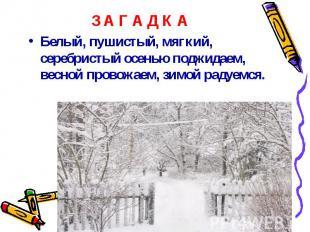 Белый, пушистый, мягкий, серебристый осенью поджидаем, весной провожаем, зимой р