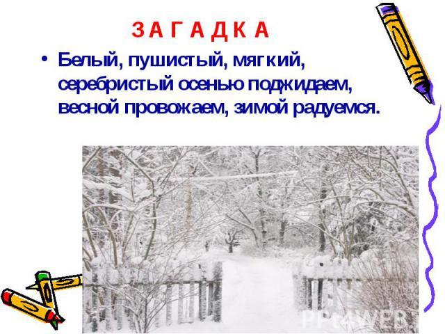 Белый, пушистый, мягкий, серебристый осенью поджидаем, весной провожаем, зимой радуемся. Белый, пушистый, мягкий, серебристый осенью поджидаем, весной провожаем, зимой радуемся.