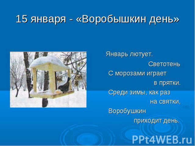 Январь лютует. Светотень С морозами играет в прятки. Среди зимы, как раз на святки, Воробушкин приходит день.
