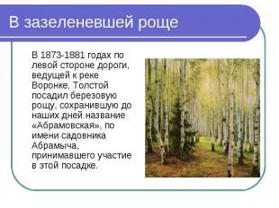 В 1873-1881 годах по левой стороне дороги, ведущей к реке Воронке, Толстой посад