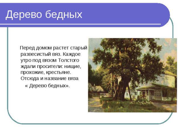 Перед домом растет старый развесистый вяз. Каждое утро под вязом Толстого ждали просители: нищие, прохожие, крестьяне. Отсюда и название вяза « Дерево бедных».