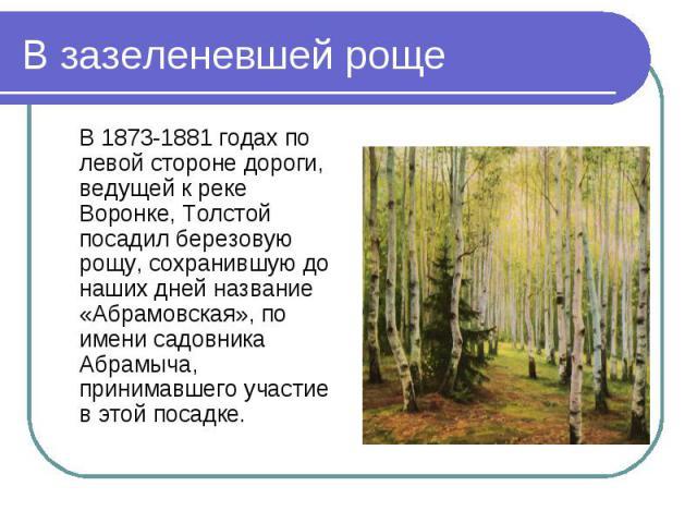 В 1873-1881 годах по левой стороне дороги, ведущей к реке Воронке, Толстой посадил березовую рощу, сохранившую до наших дней название «Абрамовская», по имени садовника Абрамыча, принимавшего участие в этой посадке. В 1873-1881 годах по левой стороне…