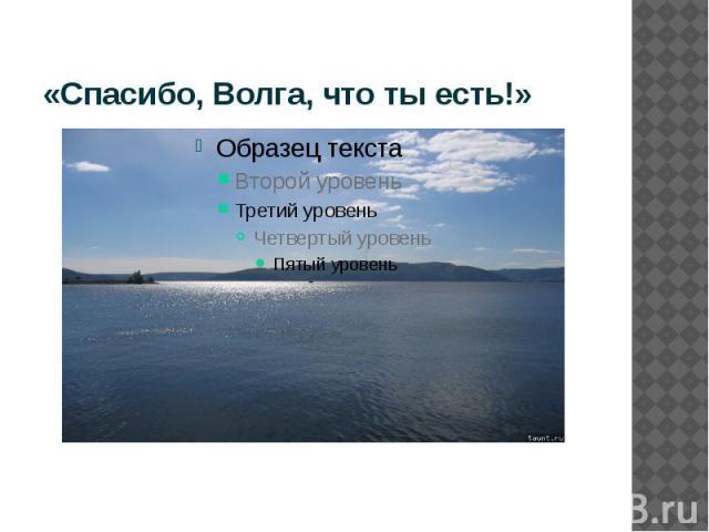 «Спасибо, Волга, что ты есть!»