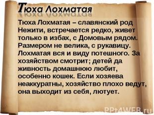 Тюха Лохматая – славянский род Нежити, встречается редко, живет только в избах,