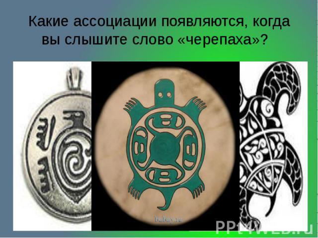 Какие ассоциации появляются, когда вы слышите слово «черепаха»?