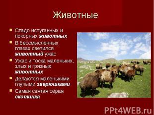 Стадо испуганных и покорных животных Стадо испуганных и покорных животных В бесс